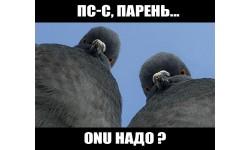 ONU сюда иди!
